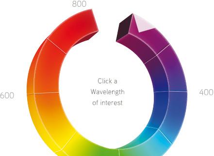 Fluorescent Dye Selector