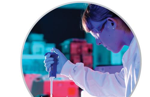 Antibody Validation