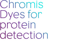 Chromis Dyes for protein protection