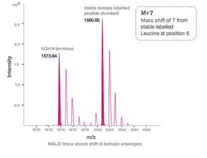 M+7 Mass shift of 7 from stable labelled Leucine at position 6