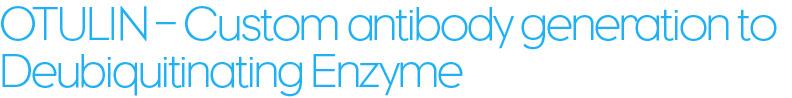 OTULIN – Custom antibody generation to Deubiquitinating Enzyme