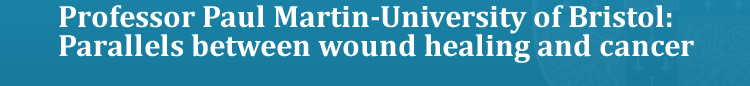 Professor Paul Martin-University of Bristol: Parallels between wound healing and cancer