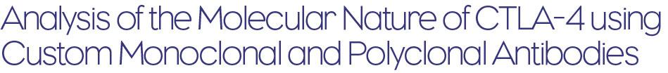 Analysis of the Molecular Nature of CTLA-4 using Custom Monoclonal and Polyclonal Antibodies