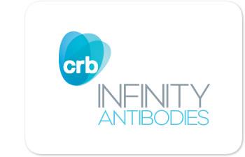 INFINITY Antibodies Logo