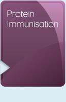Protein Immunisation