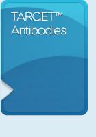 TARGET Antibodies