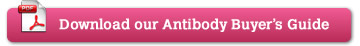 Download our Antibody Buyer's Guide