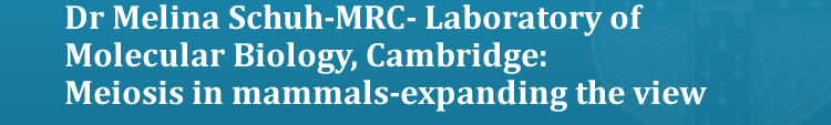 Dr Melina Schuh-MRC- Laboratory of Molecular Biology, Cambridge: Meiosis in mammals-expanding the view