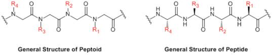 Peptoids figure 1